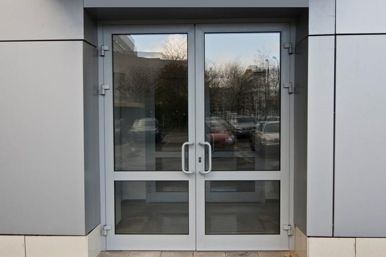 Двустворчатые со стекломвходные (Двупольные)двери